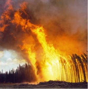 """Fuels fires"" are those fires that burn into fuels of a type and in such a condition that when they burn control is not possible."