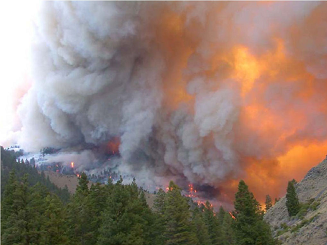 The topography fire is a fire where the major influence on fire behavior is the variations in topography.