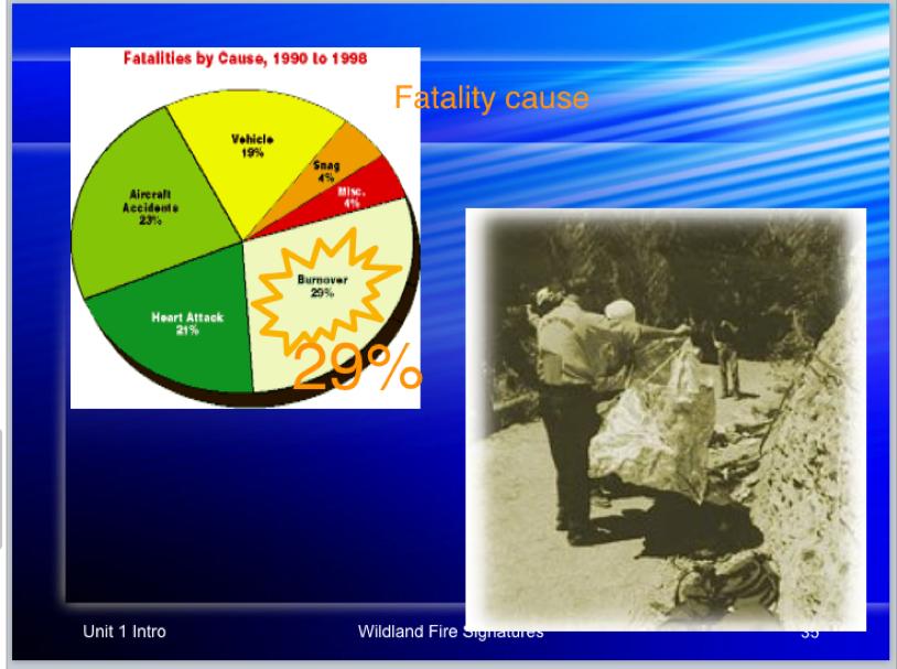 fatalities-1990-1998